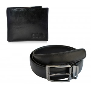 Arpera Wallet Belt  gift Combo for men CB16032