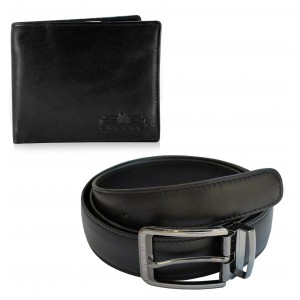 Arpera Wallet Belt  gift Combo for men CB16033
