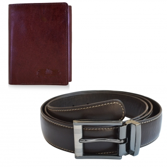 Arpera Wallet Belt  gift Combo for men CB16031